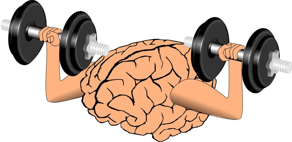 脳筋.jpg